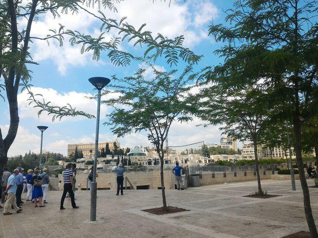 Jerusalem Israel Jaffa Gate View People Watching Cityscapes Tree