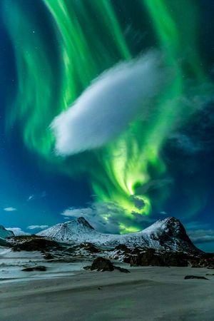 How's The Weather Today? Nordlicht Norwegen Lofoten Norway Green Northern Lights Aurora Borealis Aurora EyeEm Nature Lover Nature_collection
