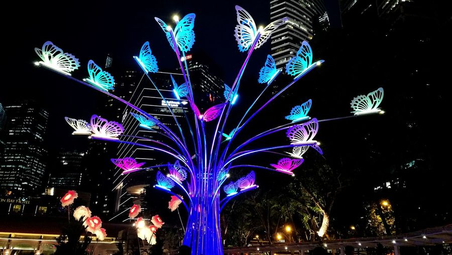 Lights Festival 2017 in Singapore Outdoors Celebration Illuminated Night Multi Colored City No People Buildings Butterflies Butterflyporn