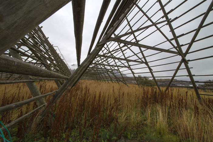 A series of photos from camping in Lofoten, Norway. Architecture Cloudy Drying Rack Fish Grass Lofoten No People Norway Old First Eyeem Photo