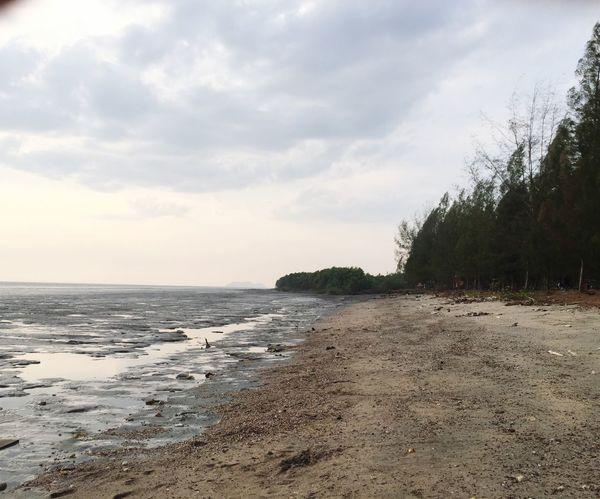 Nature Tanjung Dawai Kedah