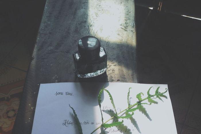 Sun Pen Ink Likeforlike Vietnamese Vietnam Fall Likeforlike #likemyphoto #qlikemyphotos #like4like #likemypic #likeback #ilikeback #10likes #50likes #100likes #20likes #likere Photogrid VSCO Eye4photography  EyeEmBestPics EyeEm Photography EyeEm Best Shots Xiugp Photo Photoshoot Photooftheday Minimal Flower Vscophoto