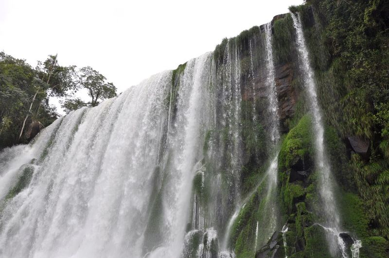 Green Iguaçu