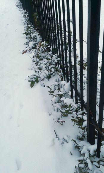 It's Cold Outside Snow ❄ Winter Padaśnieg Zima ⛄❄ Wypadzik