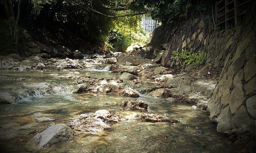 Hot Spring Park Beitou Taiwan