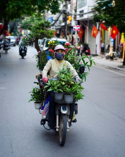 Hanoi. Mode Of Transport Transportation Land Vehicle Street Bicycle Riding Real People Outdoors Road Motorcycle Women City Day Tree Flower One Person Building Exterior Built Structure Architecture
