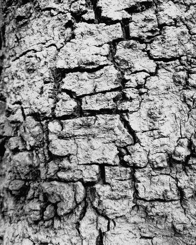 Full frame shot of cracked