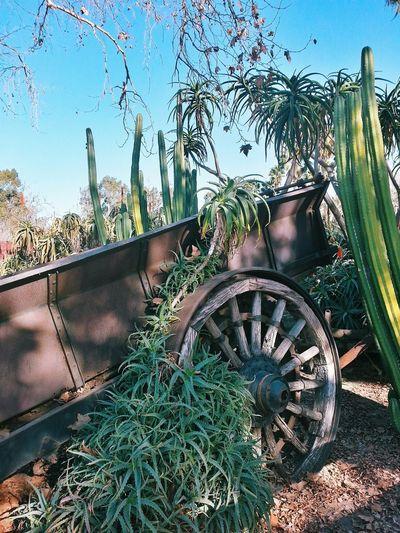 Orange County Nature Escaping Bestoftheday