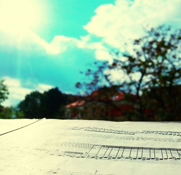 Sunny Day Practice Time  Mozart Fantasia D Minor