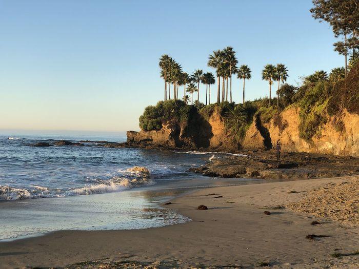 Beautiful ocean fresh water sand trees windy day