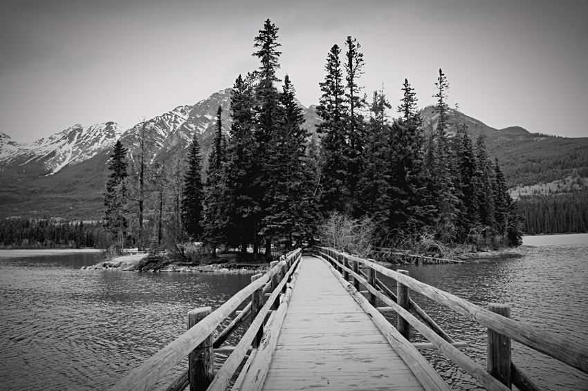 B&w Pyramid Lake Jasper Canadian Rockies  Scenic Outdoors Travel Tourist Attraction No People Lost In The Landscape Beautiful Simplicity