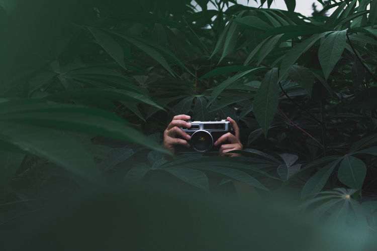 Man photographing plant