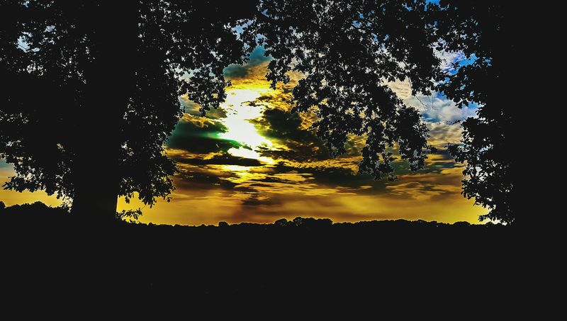 Landscapes Silhouette Tree Sunset No People Nature Outdoors Scenics Beauty In Nature Landscape Tree Sky Sunsets Of Eyeem Cloud - Sky Sunsetsilhouettes Sunset And Clouds  Sunsets Sunsetsky