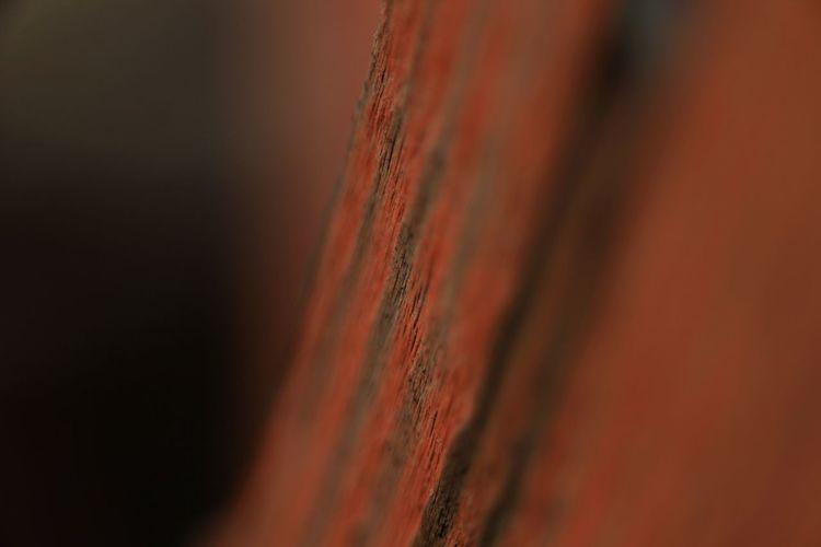 Oley Elate Texture Nature Textures Beauty Bark Beautiful Bark