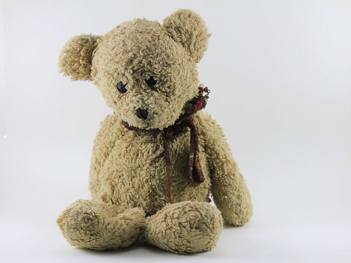 Teddy bear on a white background. Teddy Bear On A White Background. Brown Childhood Close-up Cut Out Day Indoors  No People Studio Shot Stuffed Stuffed Toy Teddy Bear Toy White Background