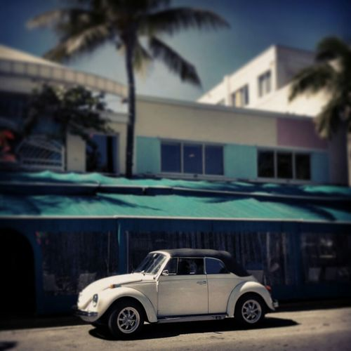 Streetphotography Beetle Streetphoto_color Vdbs