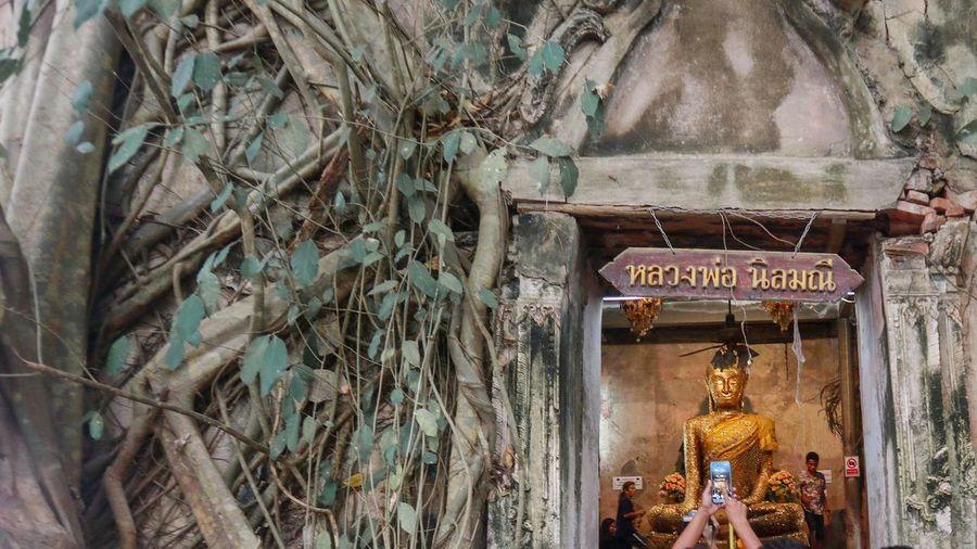 Buddha Image วัด พระ Buddha Statue Buddhist Temple TempleThailand Temple Buddha Thailand Thai River Samutsongkram Samutsongkram Thailand Ampawafloatingmarket Amphawa Thailand Amphawa