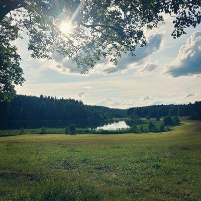 Lakehouse Lake Nature Japko