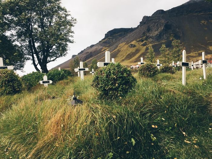 Cross At Cemetery By Mountains
