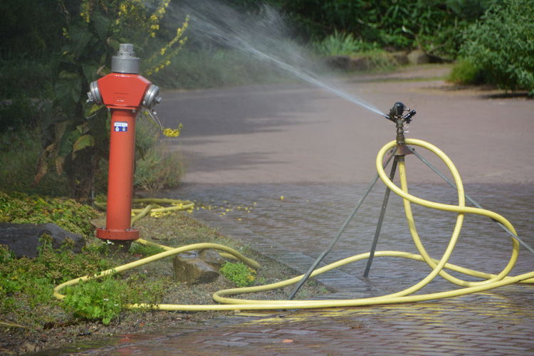 Fire hydrant by road against plants