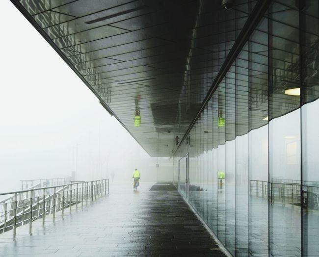 Rear view of man walking under bridge