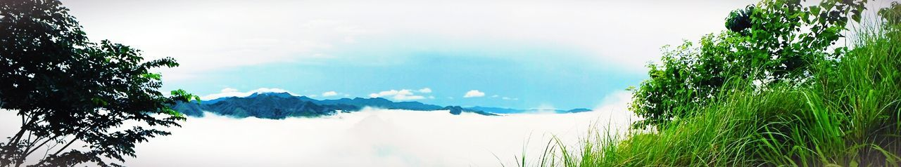 Eyeem Philippines Paradise Mountaintop Seaofclouds Phmountains Pinoymountaineer Peace Nature Photography Panoramic Photography Panorama Summit2016 Summit 4thofjuly Adventure Mtmaynuba