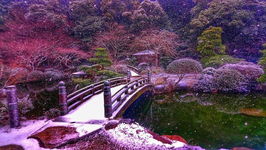 Japan Climbing