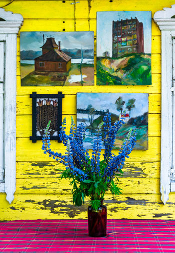 Potted plant on yellow wall of building