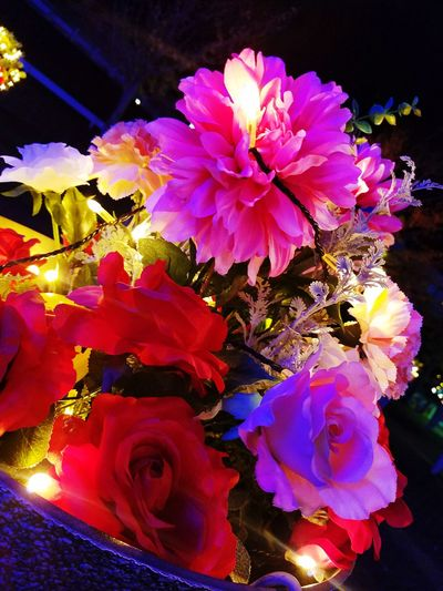 flower💐 Flower Japan Beautiful