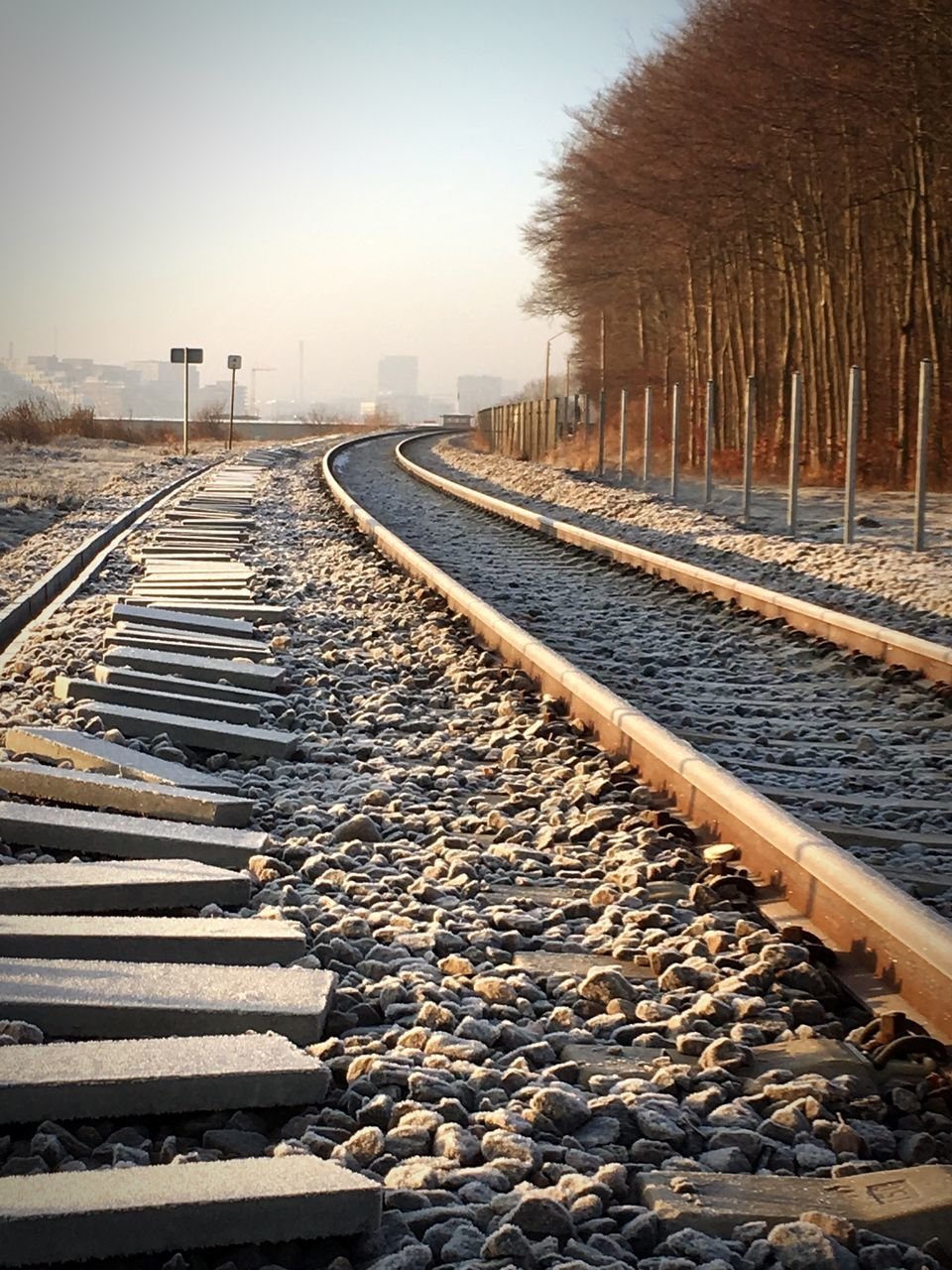 rail transportation, track, railroad track, transportation, nature, direction, tree, the way forward, no people, day, sky, solid, diminishing perspective, plant, gravel, rock, railroad tie, stone - object, in a row, cold temperature, outdoors, long, pebble
