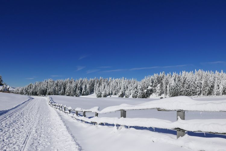 EyeEm Selects Snow Winter Cold Temperature Weather White Color Nature Tranquility Outdoors Landscape Beauty In Nature Scenics Frozen No People Day Mountain Clear Sky Sky Blue