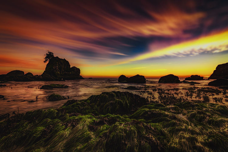 A dreamy sunset view from Trinidad, California. Pacific Northwest  Sunlight Beauty In Nature Clouds Day Horizon Over Water Nature No People Ocean Ocean Photography Outdoors Pacific Ocean Rock - Object Rock Formation Scenics Sea Sea And Sky Seascape Seaside Sky Sun Sunset Tranquil Scene Tranquility Water