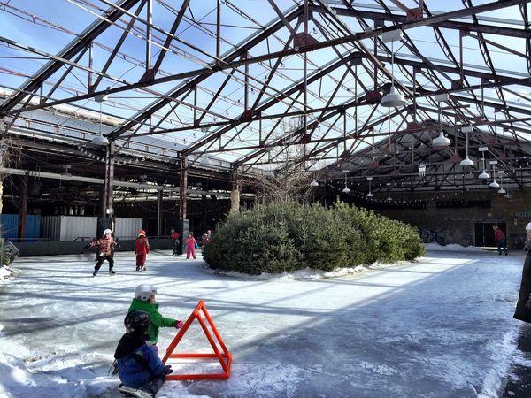 Taking a break while watching some kiddies skate 😊 Evergreen Trees Skating Kiddies Children Playing Winter Ice Skating Toronto IPhoneography