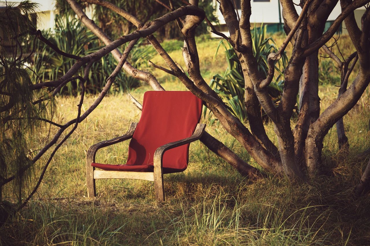 Empty Red Chair In Backyard