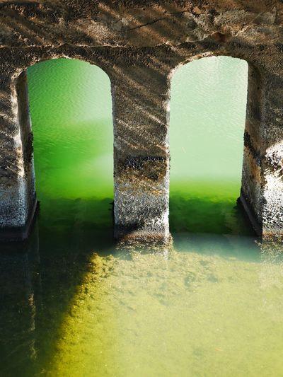 Pier/海に沈んだ古代文明じゃなくてただの橋脚です Pier River Bridge Green Walking Around LUMIX DMC-GX7 I Heart Tokyo at Ojimabashi Bridge in Tokyo Japan