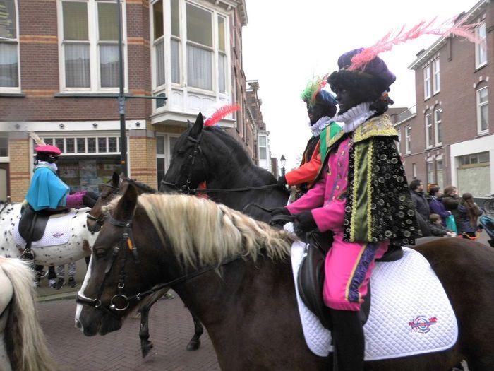 Animal Animal Themes Day Domestic Animals Herbivorous Horse Livestock Mammal Parade Pony Side View Tradition Working Animal Zwarte Piet