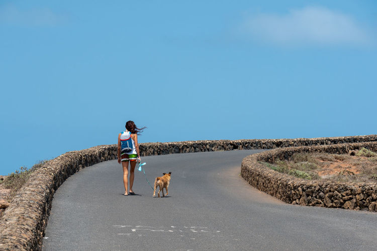 Rear view of mid adult woman with dog walking on road against blue sky