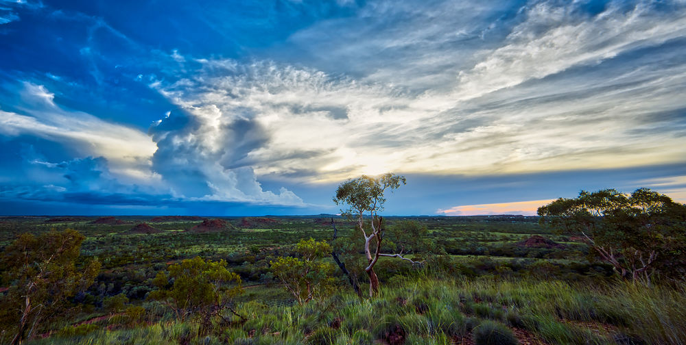 Outback Sunset, Tennant Creek, Northern Territories, Australia Australia Travel Travel Photography Beauty In Nature Cloud - Sky Landscape Nature No People Outdoors Scenics Sky Tranquil Scene Tranquility Travel Destinations Tree