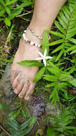 Outdoors Nature See The Simple Beauty By The Falls Beauty In Nature Wild Things Grow Flower Head White Flower Anklet Blending Part Of You Her Foot Barefoot Lifestyle Barefoot