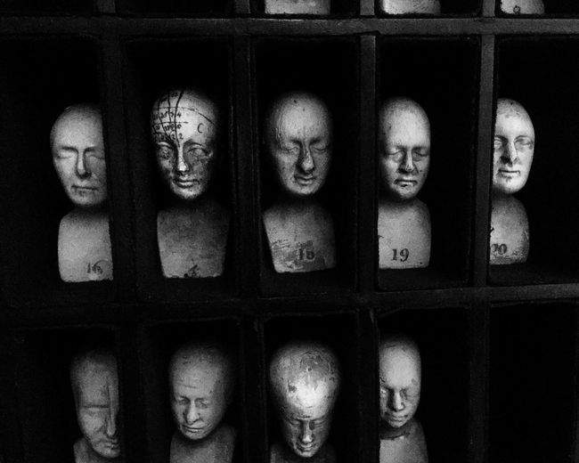 EyeEm Selects Phrenology Phrenology Heads Anatomy Museum Medical History Faces Heads Creepy Morbid Sculpture Edinburgh Black And White
