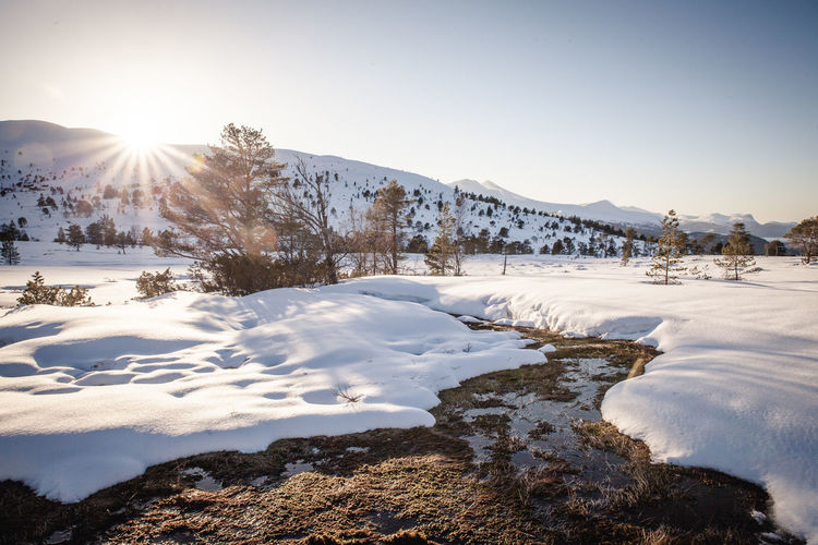 Beauty In Nature Cold Temperature Explore February Hiking Idyllic January Landscape Lens Flare Mountain Nature Nature Norway Outdoors Outside River Scenics Sky Snow Sun Sunlight Tranquility Weather Winter Winter