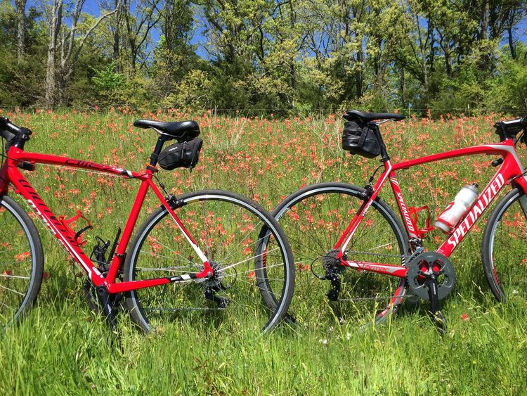 In the red Flowers Flower Flowerporn Flower Collection Bicycle Cycling Cycle Bicycles Specialized