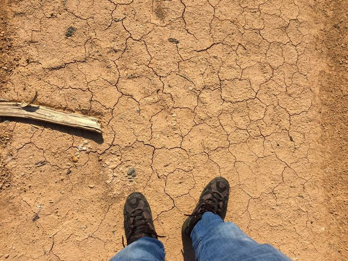 Low section of man standing on barren field