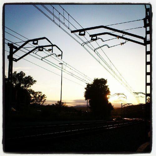 Longtrainrunning Rails Tren