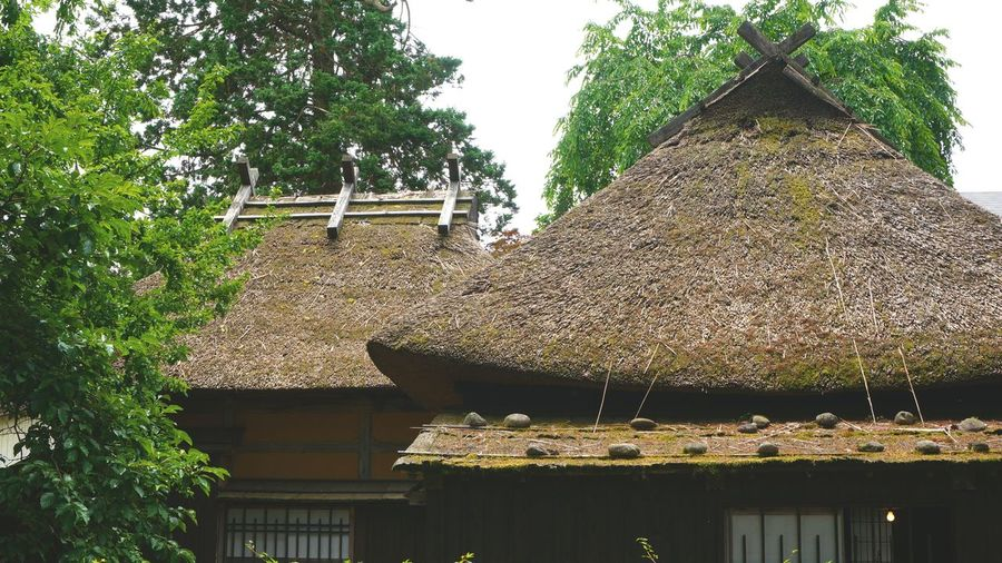 Thatched roofs on a Samurai house in Kokunodate, Japan. Architecture Decorative Thatched Roofs Japan Culture Koki Kokunodate Rooftops Samurai Houses Thatched Roofs