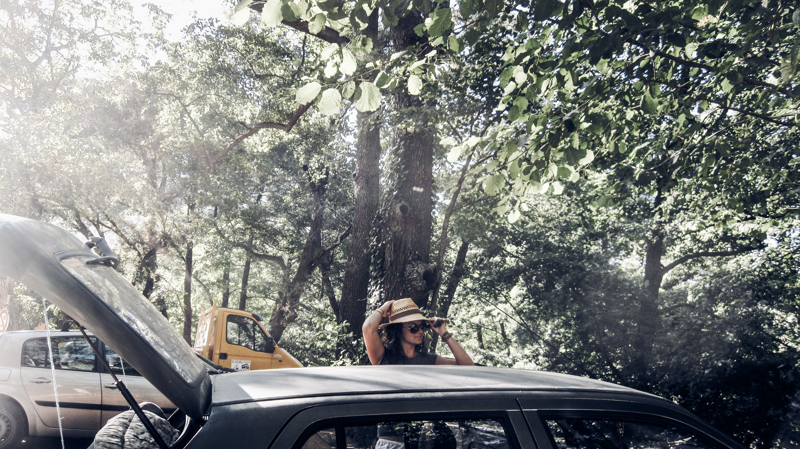 tree, mode of transportation, transportation, car, plant, motor vehicle, one person, land vehicle, nature, day, real people, lifestyles, travel, outdoors, adult, sitting, growth, men, front view