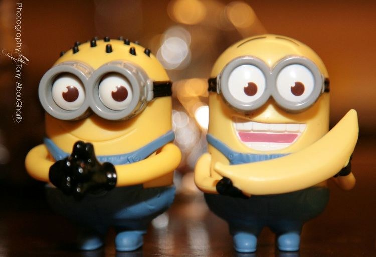 Minions Cheese! Taking Photos with Purpleheels