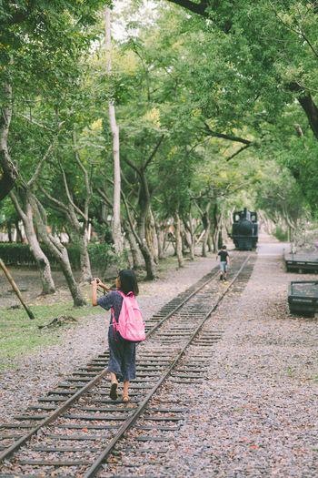 羅東林業文化園區 Park - Man Made Space Beauty In Nature Railway EyeEm Best Shots Color Of Life Luodong Forestry Travelling Taiwan Luodong Starting A Trip Sound Of Life Childhood Leisure Activity Rai