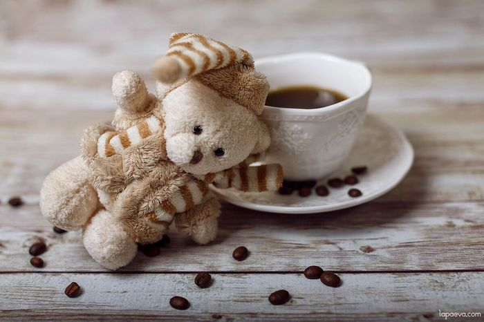 Coffee Coffee ☕ Coffee Cup Bear Autumn Toyphotography Toy