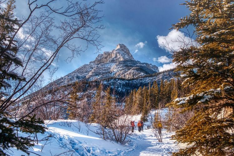 Winter wonder land Landscape Canadian Rockies  Winter Wonderland Snowmountain Canmore Winterhike Snow Cold Temperature Winter Tree Plant Beauty In Nature Sky Nature Scenics - Nature Mountain Tranquility Forest Non-urban Scene Land 17.62° 17.62° My Best Photo The Great Outdoors - 2019 EyeEm Awards
